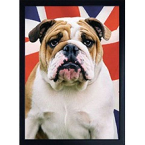 BRITISH BULLDOG 3D FRIDGE MAGNET
